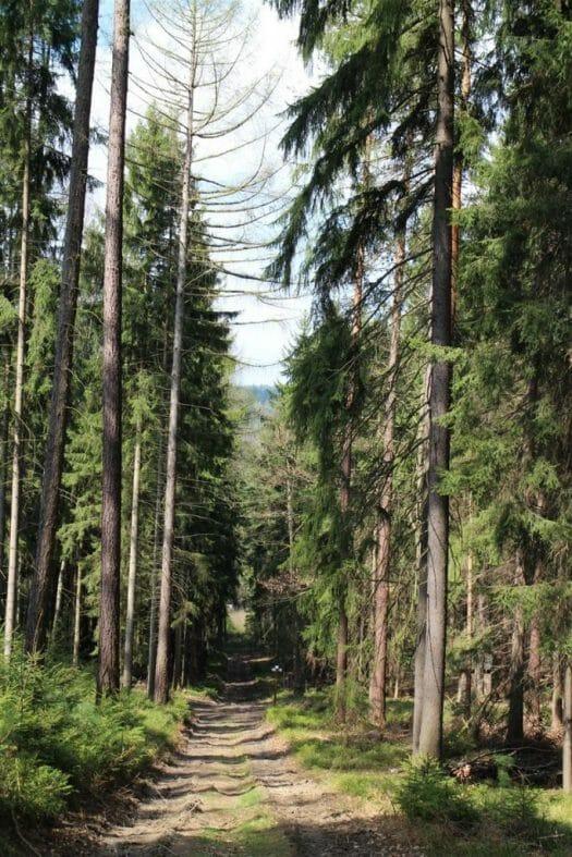 Das Vogtland entdecken – Bad Elster