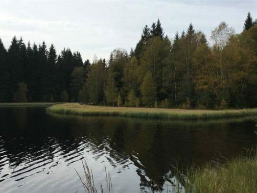 Urlaub und Wandern im Vogtland - Vogtlandsee - ein Ausflugstipp