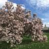 Fünf Tipps für Ausflüge ins Vogtland im Frühling