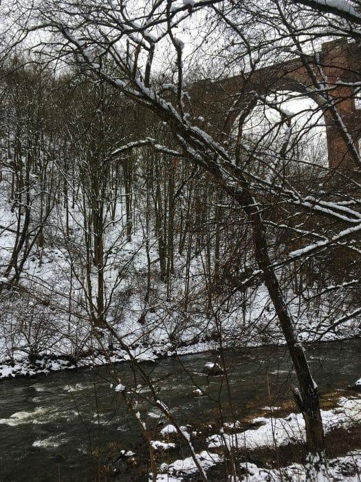 Wanderung durch das winterliche Elstertal zur Elstertalbrücke