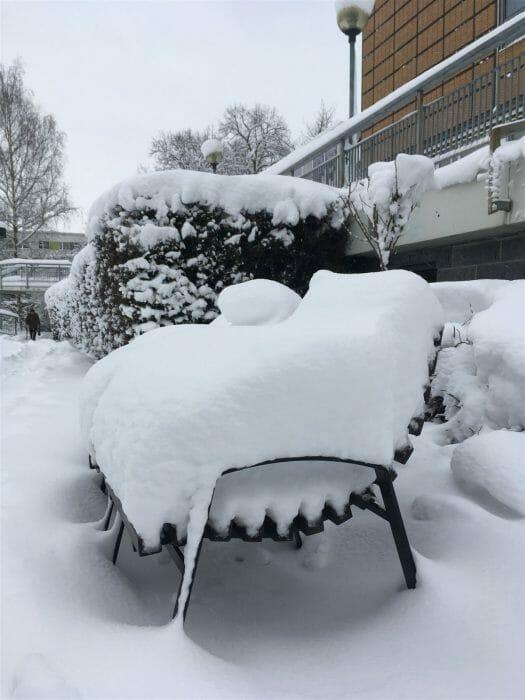 Winter in Sachsen - winterlicher Spaziergang durch Plauen - Albertplatz