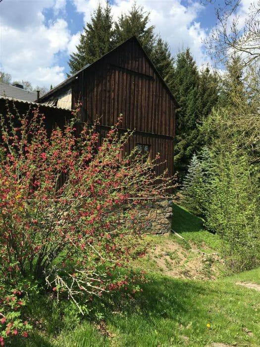 Wanderung im Frühling durch das Burgsteingebiet