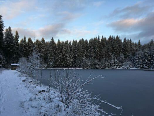 Wanderung im Winter von der Talsperre Muldenberg zum Sauteich  (Vogtland / Sachsen)