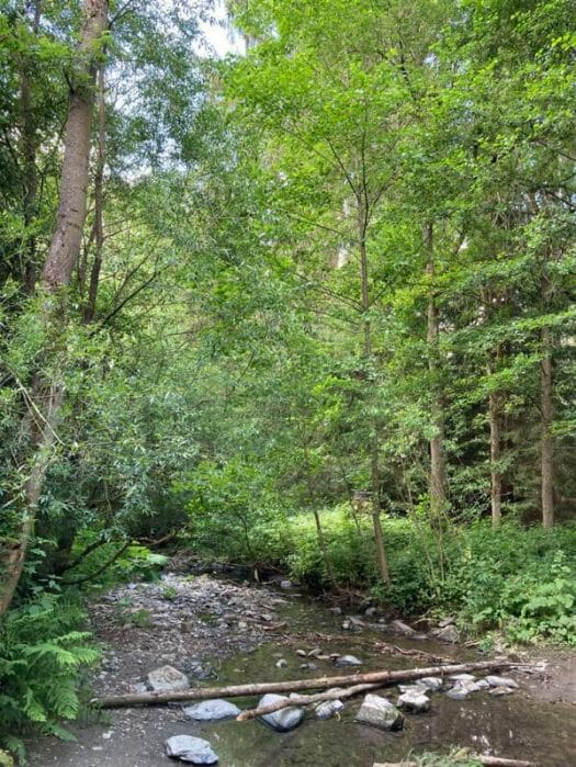Wandern durch den Ottergrund in Thüringen