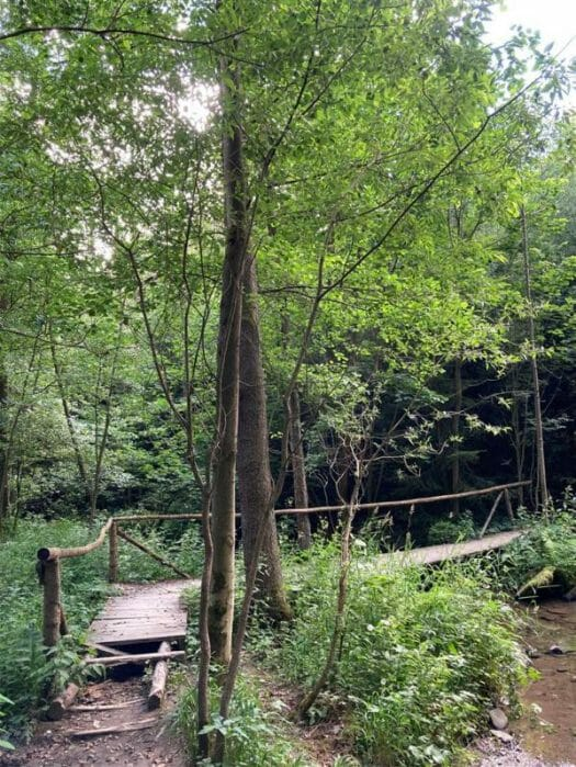 Wanderung im Ottergrund in Thüringen